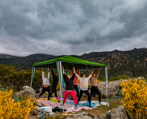 Yoga au milieu de chevaux - DESTINATION MADRID