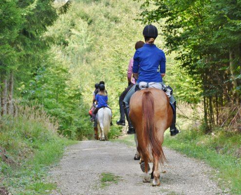 Balade à cheval à Madrid